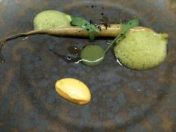 Agape - Carrot and Vervine foam, carrott puree